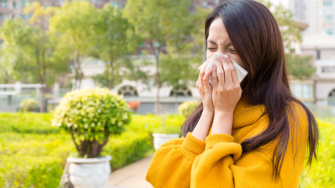 natural-remedies-for-seasonal-allergies-centennial-co
